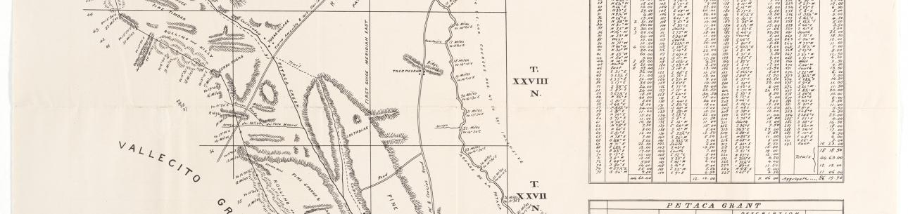 Plat of the Petaca Grant in the Territory of Mew Mexico, 1878