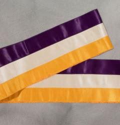 Suffrage Parade Sash