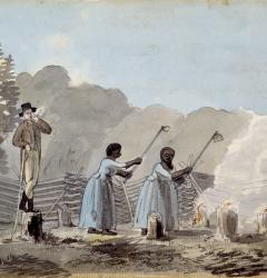 Slave labor was fundamental to the Southern economy and culture.